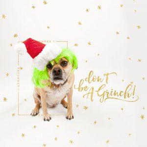 Dog Days of December Scrapbooking photoart