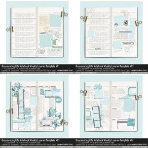 Traveler Notebook Project Life