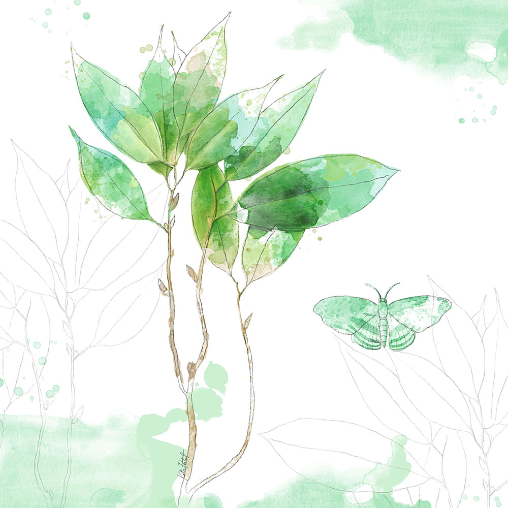 Katie Pertiet 100 Days of Botanicals watercolor