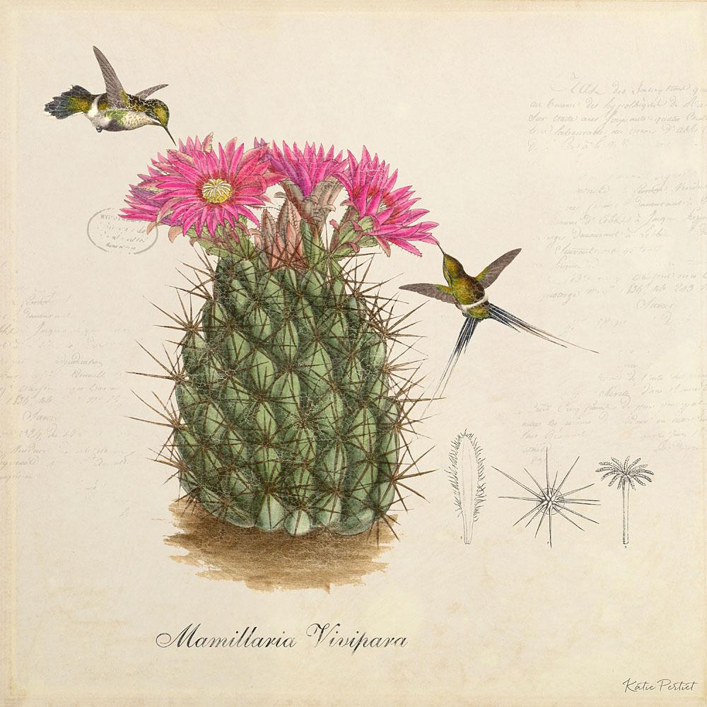 Katie Pertiet Classic Botanical Cactus