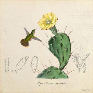 Katie Pertiet Classic Vintage Botanical Cactus