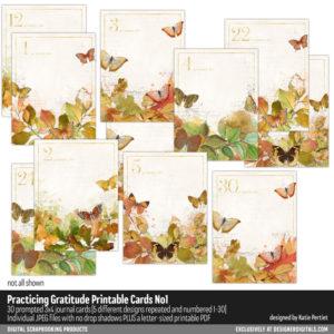 Practicing Gratitude 3x4 Pocket Cards