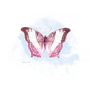 LKatie Pertiet Painted Butterflies
