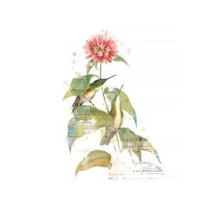 Katie Pertiet Hummingbirds Collage Art