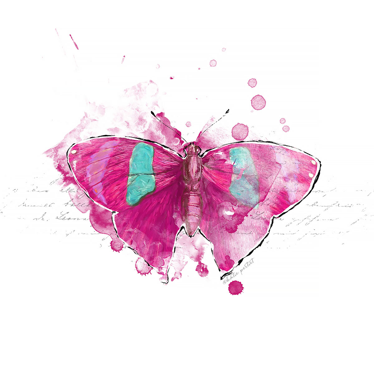 Katie Pertiet Painted Butterflies