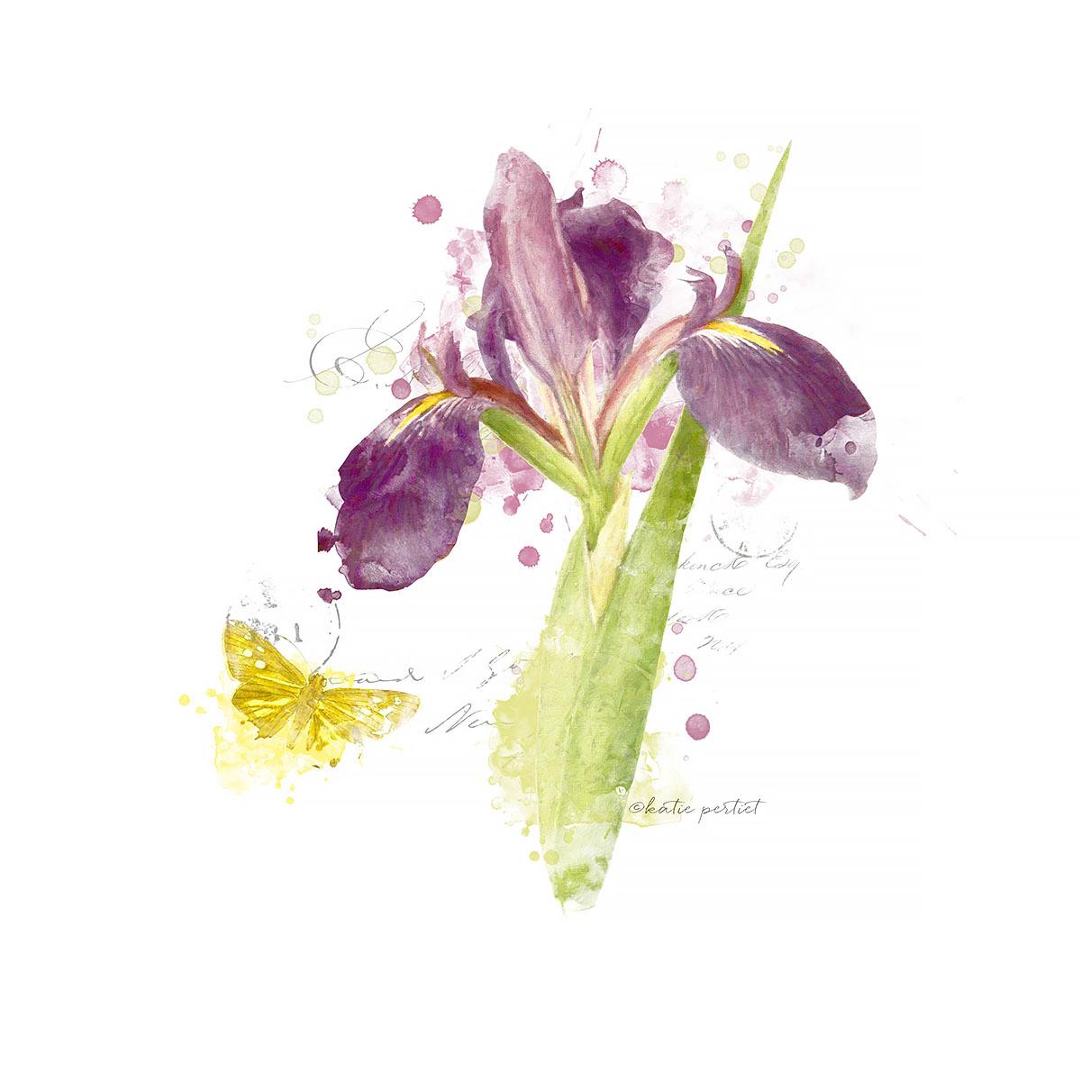 Katie pertiet Watercolor Botanical