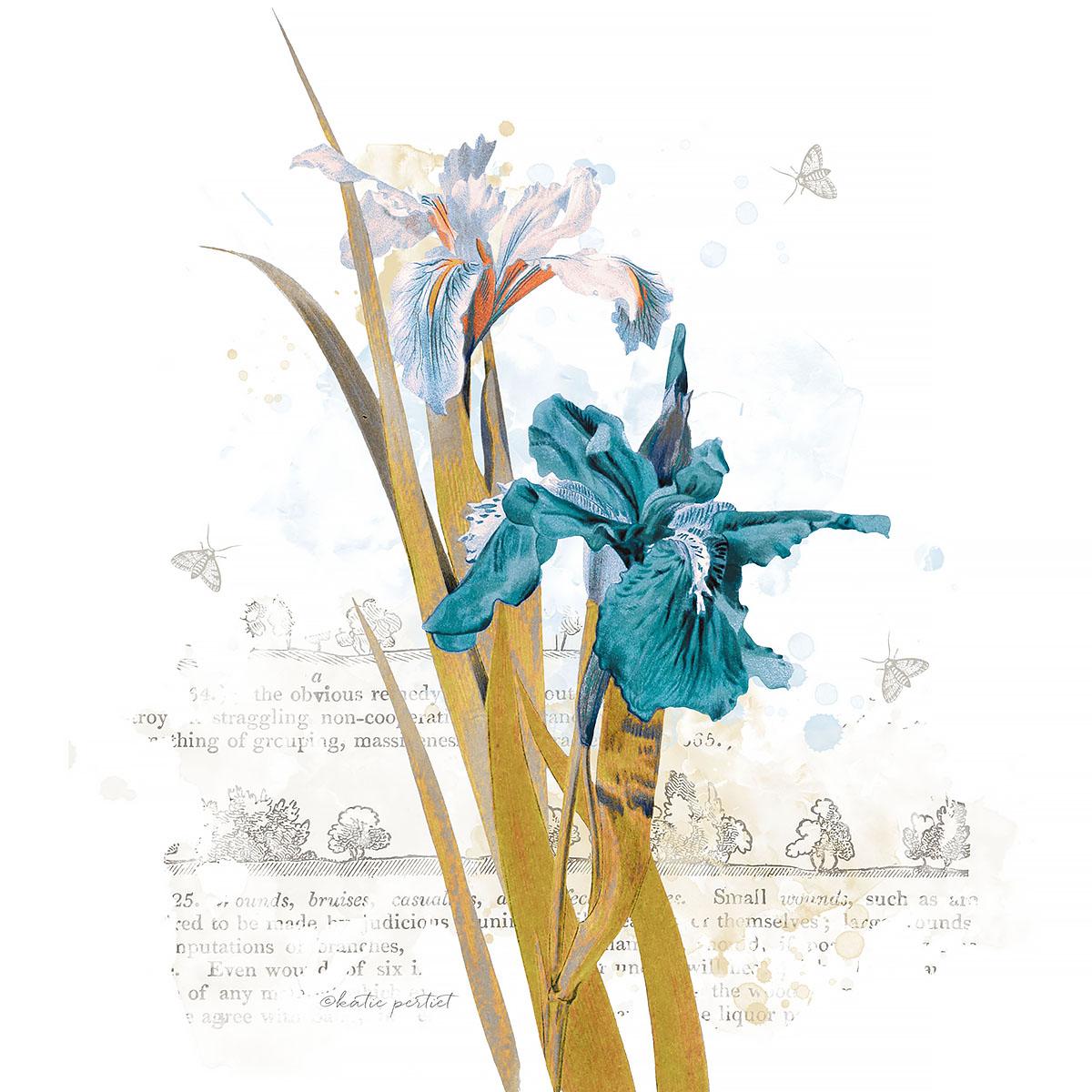 Katie Pertiet Blue Botanicals