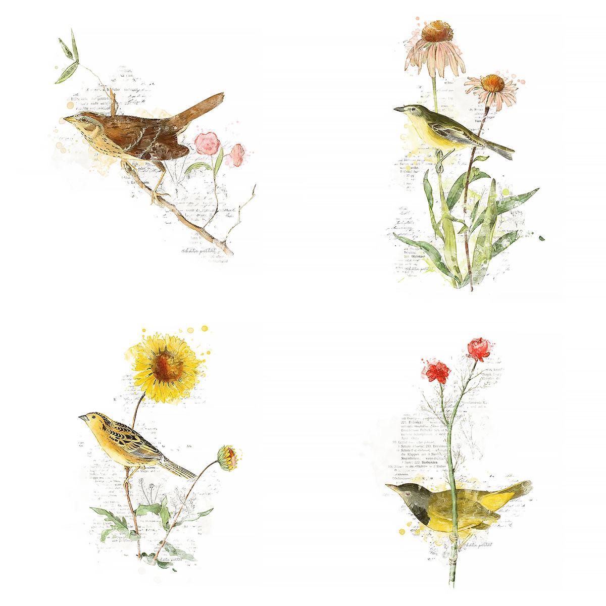 Katie Pertiet Painted Vintage Botanicals