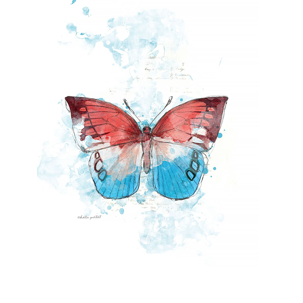 Katie Pertiet Painted Patriotic Butterfly