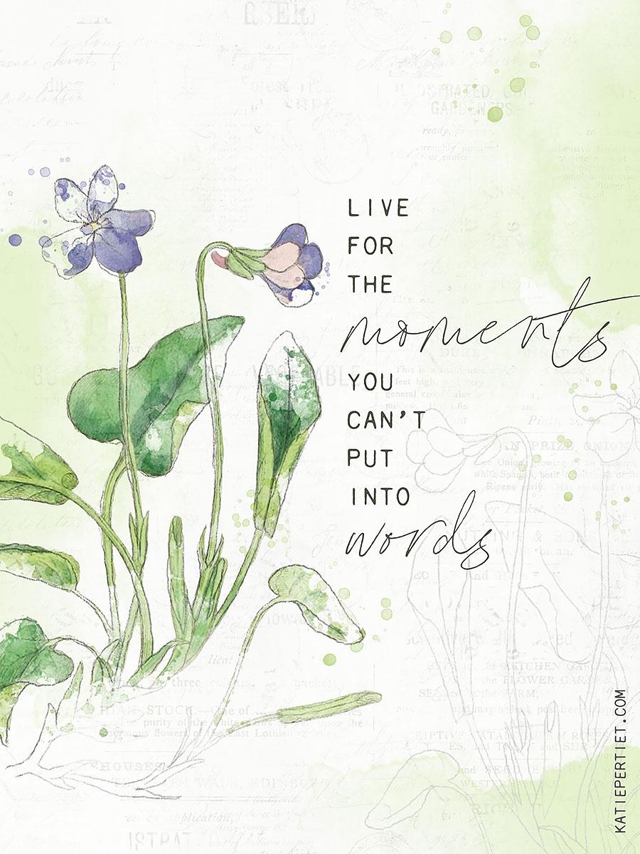 Katie Pertiet watercolor botanicals
