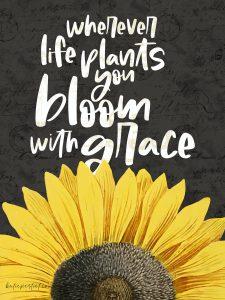 Katie Pertiet Free Sunflower Card