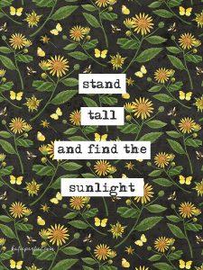 Katie Pertiet sunflower card