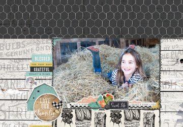 Katie Pertiet Farmhouse Garden